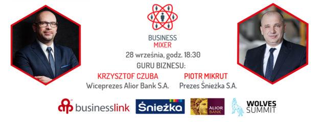 fot-sniezka_business_mixer