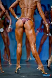 World Fitness Championschips